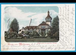 AK Mülhausen Mulhouse Litho Elsass Restaurant Zoo (1132
