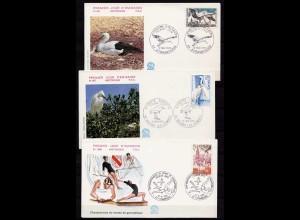 Vögel Tiere Wildlife Birds 3 covers or cards (b255