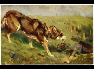 AK Hund Sanitätshund im Felde Wohlfahrtskarte Malerei signiert (2932