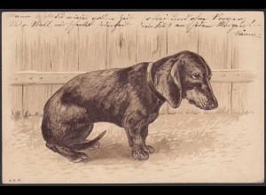 AK Prägedruck Hund Dackel 1902 Orstkarte Berlin (20415