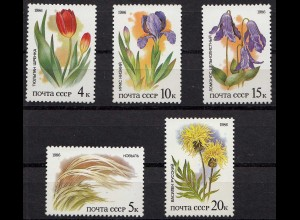 Russia - Soviet Union 1986 Mi.5573-77 Protected plants of the steppes, set