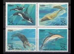 Russia - Soviet Union 1990 Mi.6130-33 Meeres-Säugetiere ** MNH set (83017