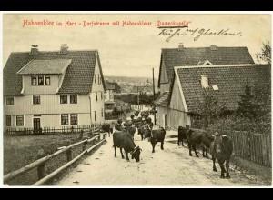 AK Hahnenklee Goslar Dorfstrasse Damenkapelle 1907 (2453