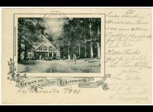AK Eckernworth Waldsrode 1898 Jugendstil Gasthaus (2244