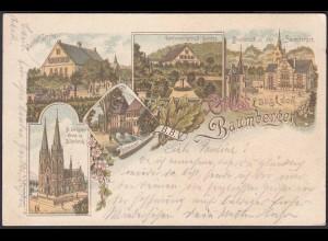 AK Litho Nottuln Billerbeck Havixbeck 1900 bei Coesfeld Münster (22658
