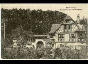 AK Strassburg Bauernhaus in der Orangerie (1229