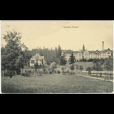 AK 1911 Sachsen Neustadt Heilstätte Hohwald (0939