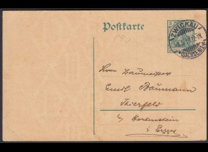 Karte Ganzsache 5 Pfg.Germania m.WZ Zwickau 1913 Thierfeld/Hartenstein (24432