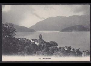 AK Beckenried See-Ansicht Schweiz (12640
