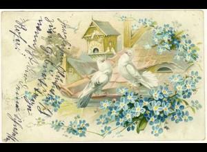 AK 1905 Glückwunsch Blumen Tauben Pärchen Prägedruck Embossed (2844
