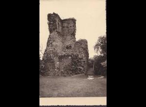 AK Stecklenberg Harz Lauenburg ruine gelaufen 1962 (6980