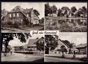 AK Harmstorf Dahlenburg 4- Bild Karte Pension Tiede echt Foto (6971