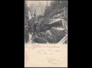 AK Gruss aus der Edmundsklamm Bahnpost Dresden - Boudenbach 1899 (27421