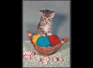 AK Katze im Wollkneul-Korb (65183