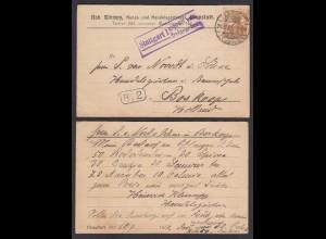 DR Karte 1916 Kunst- u.Handelsgärtnerei Cannstatt nach Boskoop Holland Zensur