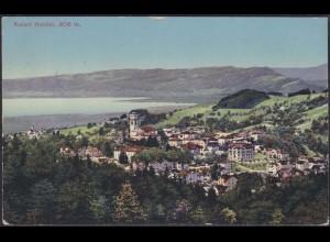 AK Heiden Gesamtansicht Schweiz 1917 (12652
