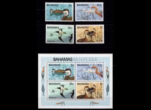 Bahamas 482-485 + Block 34 Vögel Birds Wildlife 1981 SET & SHEET **(9218