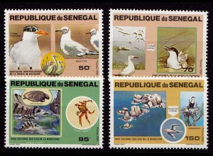 Senegal kompl. set Vögel Birds Wildlife 1981 Mi. 741-744 (9604