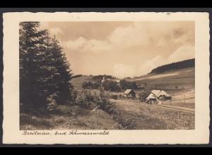 AK Breitenau Hinterzarten nach Dresden 1938 Ski Stempel (16484