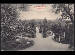 AK Hohenholte (Havixbeck) Gasthof + Arnemanns Garten (16788