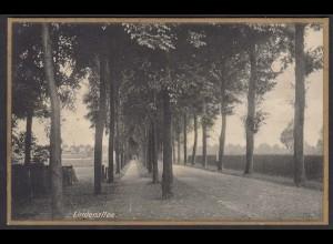 AK Gescher Westfalen Kreis Coesfelt Lindenallee 1939 nach Glandorf (16804