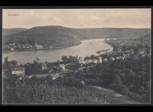 AK Niederwald bei Rüdesheim 1912 Gesamtübersicht (17144