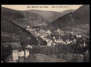 AK Bad Bertrich Eifel 1908 Gesamtansicht nach Münster (17193
