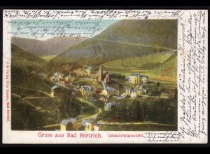 AK Litho Gruss aus Bad Bertrich Eifel Gesamtansicht 1902 (17198