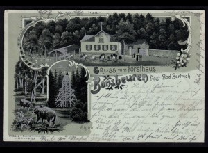 AK Mondschein-Silber-Litho Forsthaus Bonsbeuren Post Bad Bertrich 1901 (17200