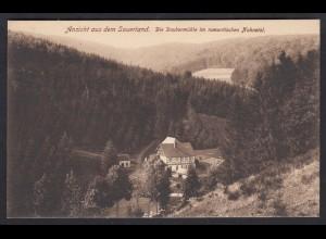 AK Winterberg Daubermühle Nuhnetal (17292