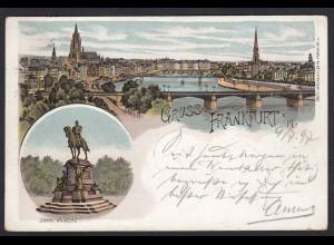 AK Litho Gruss aus Frankfurt Gesamtansicht Denkmal Wilheim 1 1897 (17411