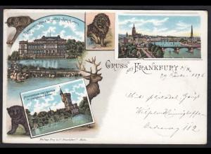AK Litho Gruss aus Frankfurt a.M Gesamtansicht 1896 (17412