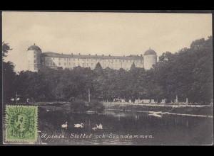 AK Schweden Upsala Slottet och Svandammen (12653