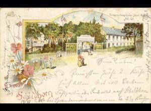AK Litho Pichelsdorf Schildhorn Wirtshaus Dampferstation Berlin 1897 (1929