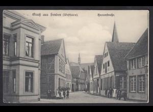 AK Gruss aus Senden Westfalen 1907 Herrenstrasse (17370