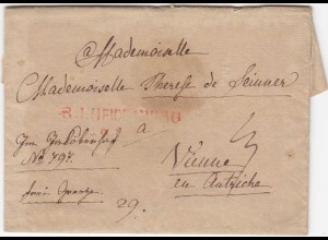 Heidelberg L1r Vorphila 1822 Adelsbrief n. Wien Inhalt (4035