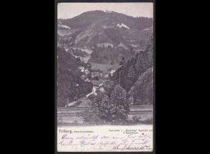 AK Triberg Schwarzwaldbahn Bahnlinien Bahn 1903 (12317