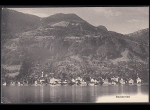 AK Beckenried Nidwalden Gesamtansicht (12393