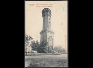 AK Rochlitz Turm des Rochlitzer Berges Friedr. August Denkmal 1909 (12404