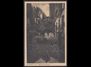 AK Wertheim a. m. Partie am Schloss 1925 (12449