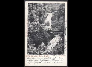 AK Gruss aus Dem Bayer. Wald Riesslochfall 1903 (12527
