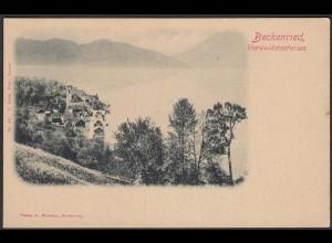 AK Beckenried Vierwaldstättersee Nidwalde Schweiz (12578