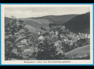 AK Wildemann i. Harz Gesamtansicht (2444