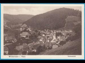 AK Wildemann i. Harz Goslar Teilansicht (2451