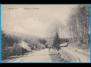 AK Seesen a. Harz Granetal Goslar 1909 (2452