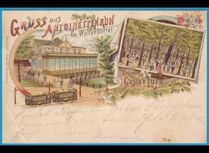 AK Litho Antoinettenruh b.Wolfenbüttel Eisenbahn (2506