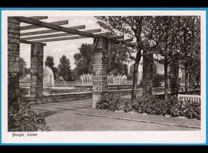 AK Gruga Park Essen (2532