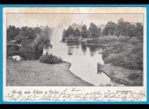 AK Essen a.Ruhr Stadtgarten 1901 (2539